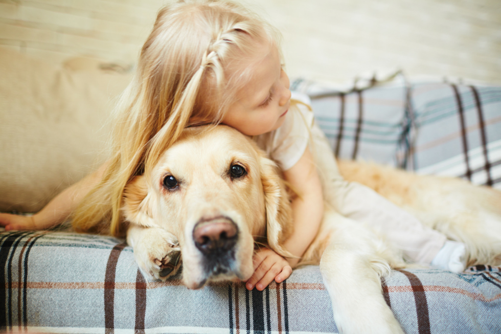 Child and Pet Care