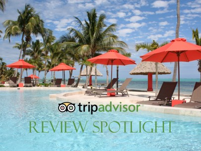 Trip Advisor Review Spotlight