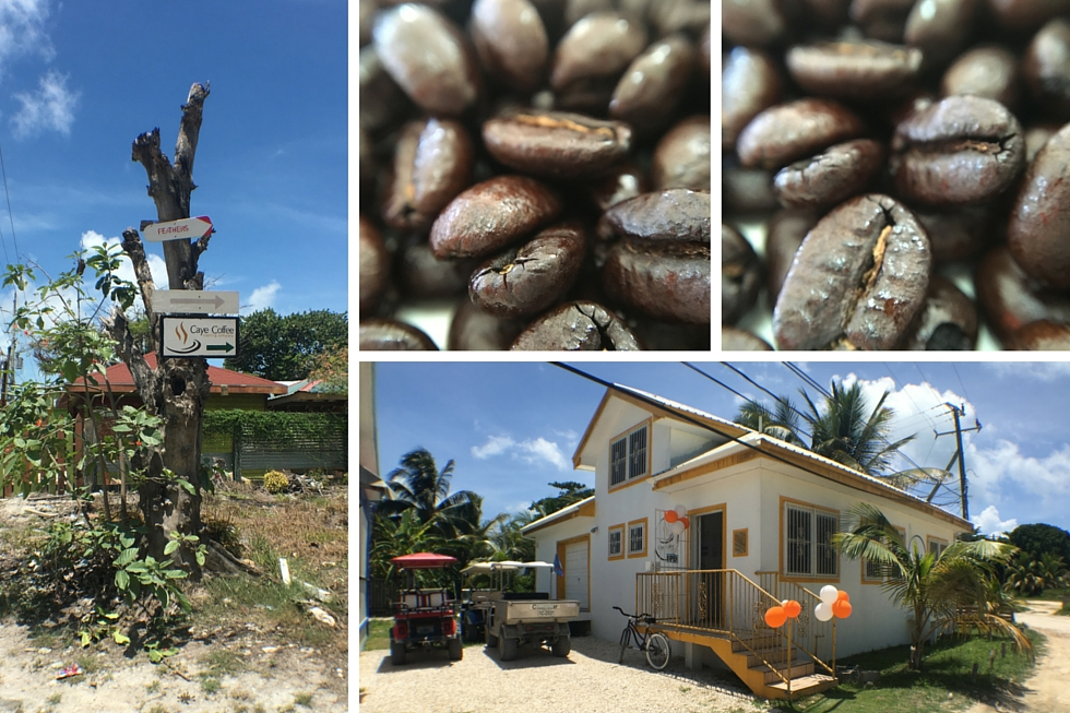 Caye Coffee Roasting Company - June 16th