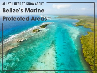 Belize marine protected areas