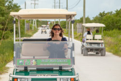 Golf Cart to Town