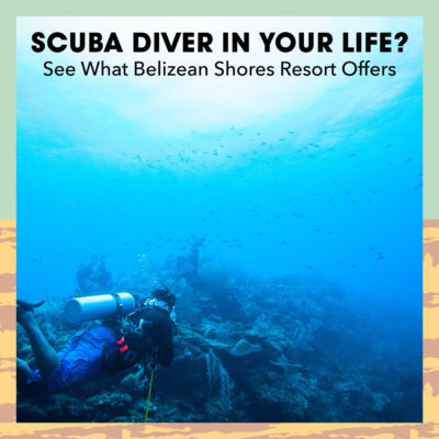 Scuba-Diver-In-Your-Life_