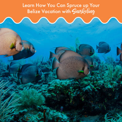 Learn-how-you-can-spruce-up-your-belize-vacation-with-snorkeling