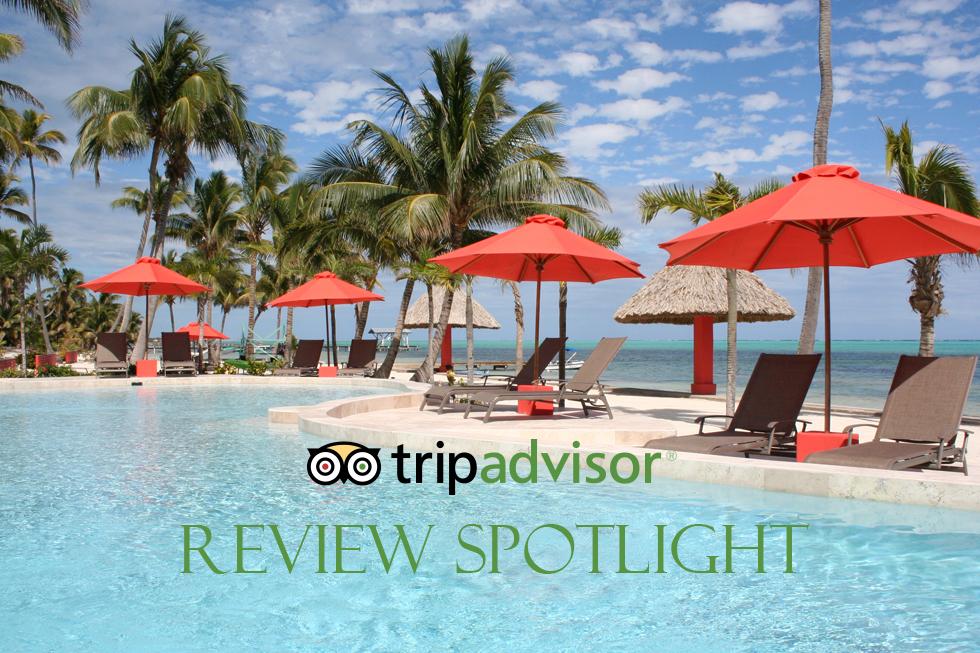 Trip Advisor Review Spotlight