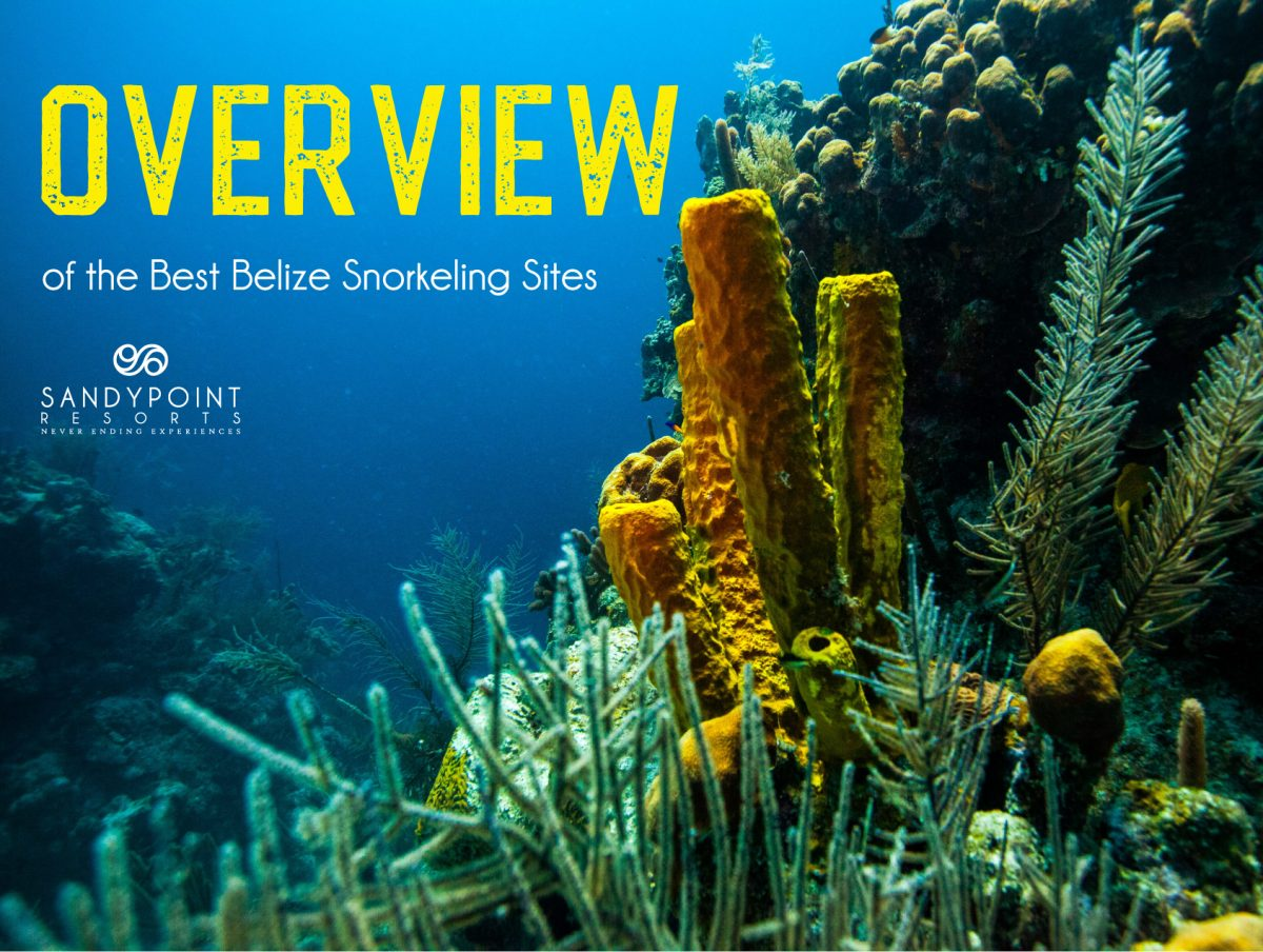 Overview of Belize Snorkeling sites