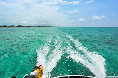 Diving Belize