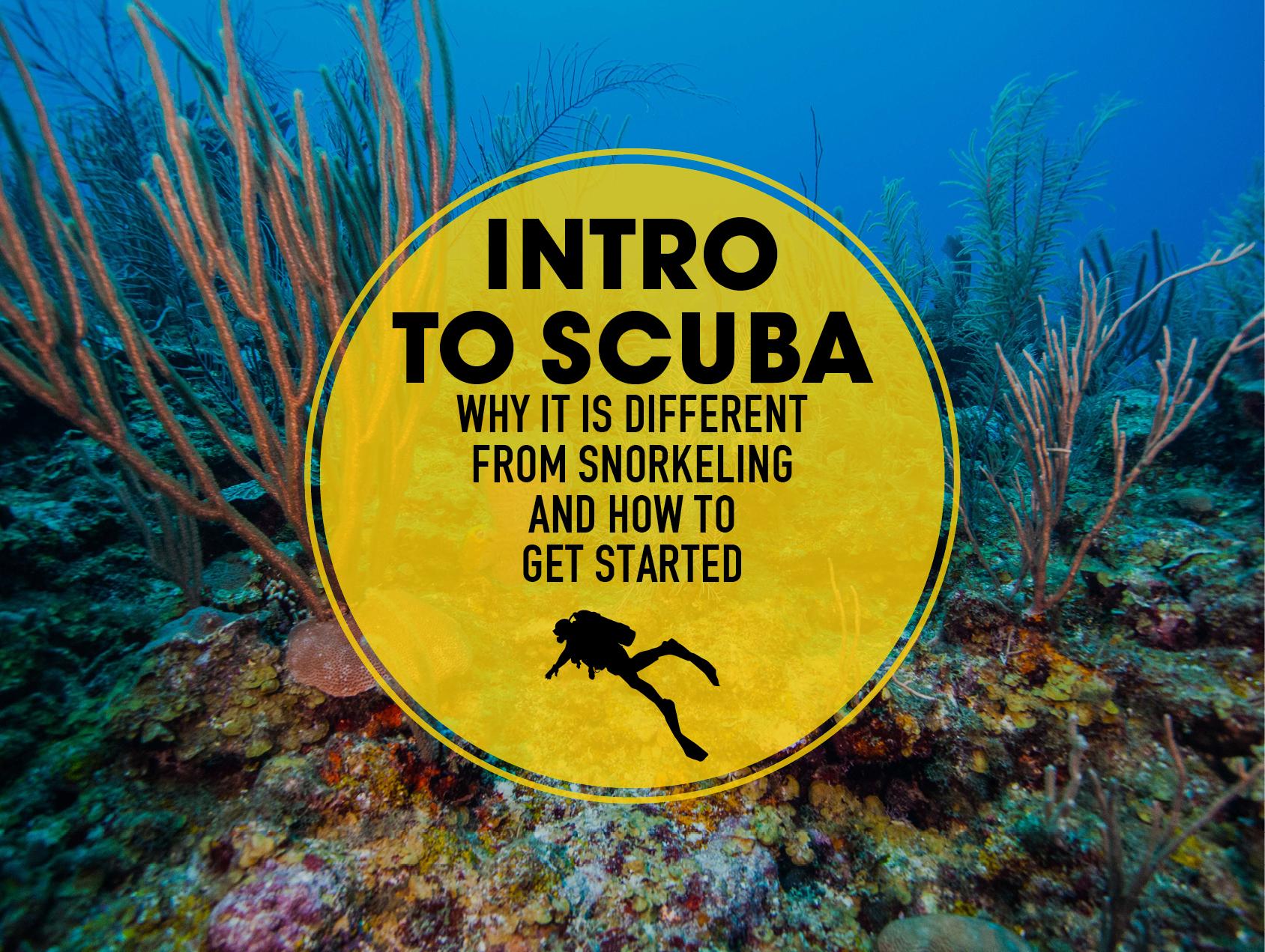 Xtan_ha_should_you_try_diving