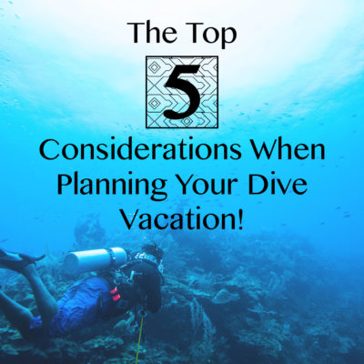 Top 5 considerations for your diving vacation